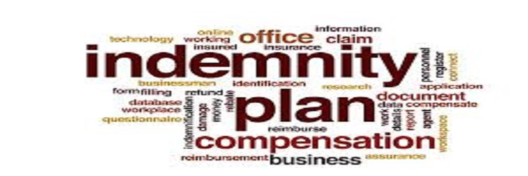 Indemnity Plans - A Flexible Health Plan